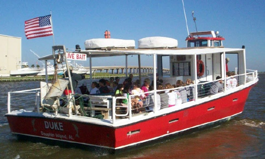 dauphin island boat tours